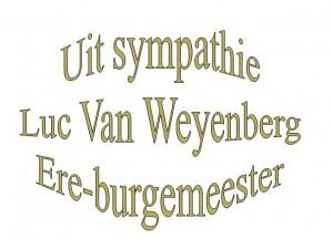 luc-van-weyenberg